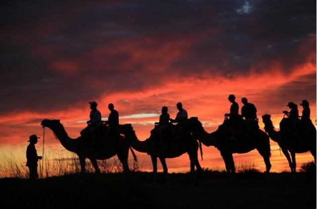 Camel riding by the sunset in Uluru, Melbourne