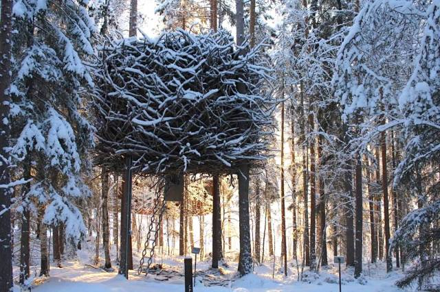 The Bird's Nest Room is one of the room design options The Tree Hotel in Sweden provides