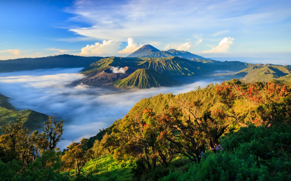 Bromo vocalno at sunrise, East Java, , Indonesia