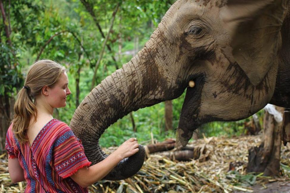 Chiang Mai: Karen Village Elephant Sanctuary